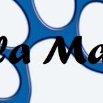 cropped-logo_header.png